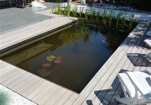 Terrasse en bois exotique PADOUK entourage bassin à poissons - PHALEMPIN ( 59 )