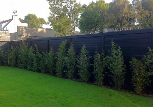Beautiful Palissade Jardin Moderne Photos - Amazing House Design ...
